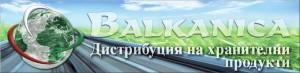 logo_bg-300x73