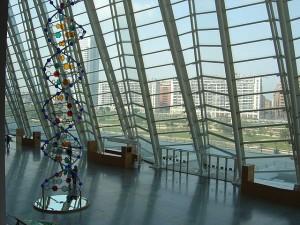 Museo de las Ciencias Príncipe Felipe